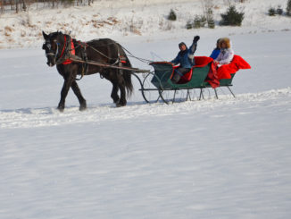Sleigh Ride in Vermont